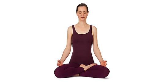 Practice meditation with Swami Yatidharmananda