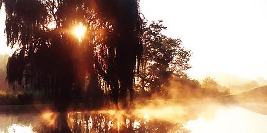 Theme Week: Chandra Cohen talks about Vedanta
