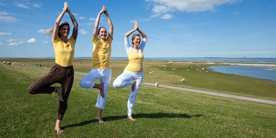 Yoga, Spirit and Nature